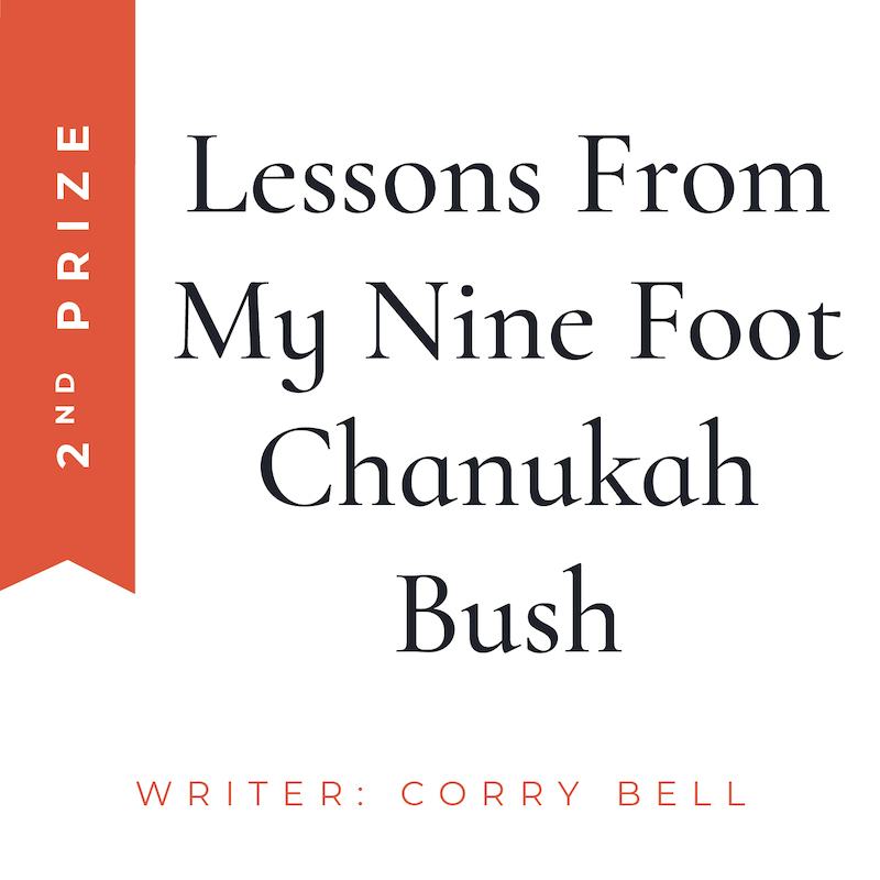 lessons from chanukah bush